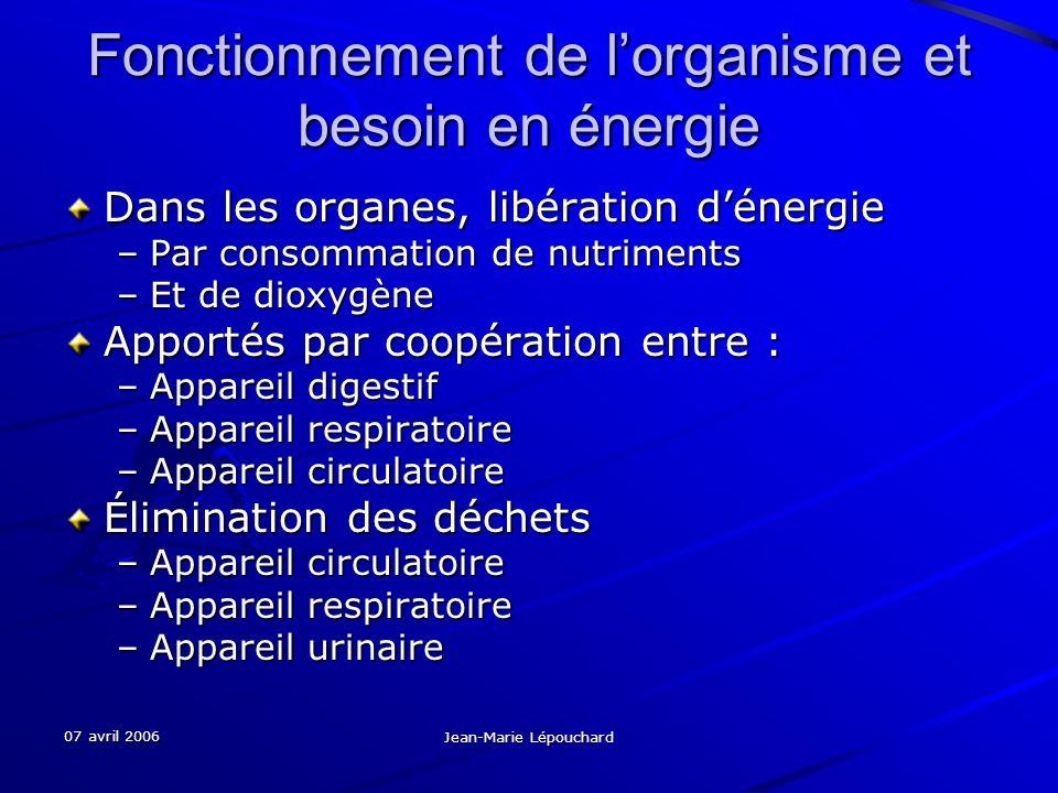 07 avril 2006 Jean-Marie Lépouchard Fonctionnement de lorganisme et besoin en énergie Dans les organes, libération dénergie –Par consommation de nutri