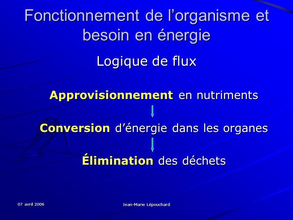 07 avril 2006 Jean-Marie Lépouchard Fonctionnement de lorganisme et besoin en énergie Logique de flux Approvisionnement en nutriments Conversion déner