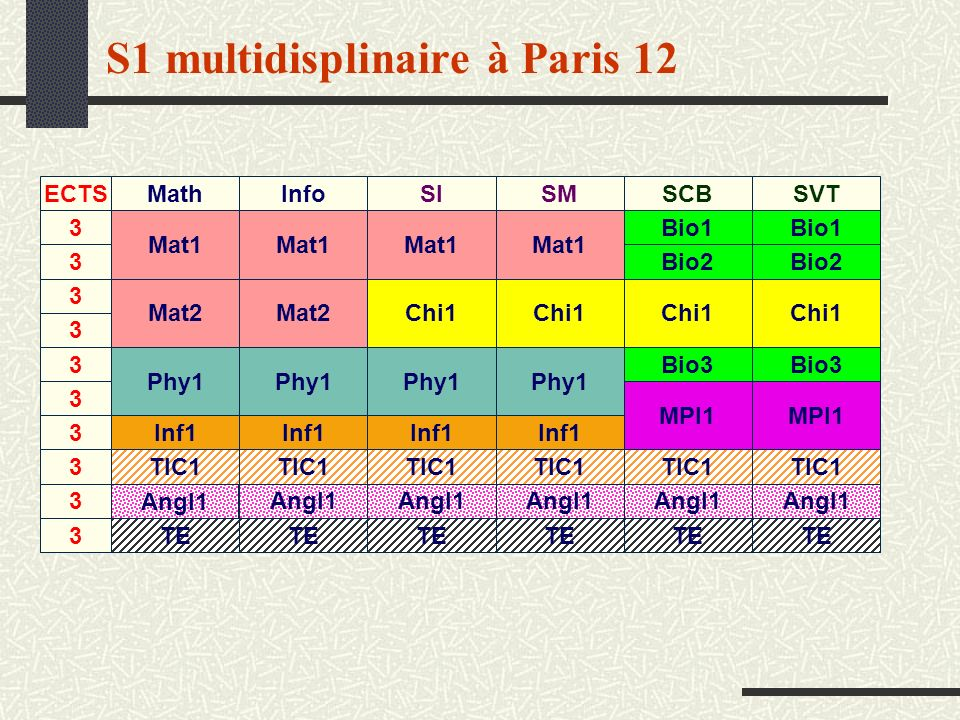 S1 multidisplinaire à Paris 12 Angl1 MathInfoSISMSCBSVT Mat1 Mat2 Mat1 Mat2 Mat1 Phy1 Chi1 MPI1 Bio2 Bio1 Bio2 Bio1 Bio3 Inf1 TIC1 Angl1 TE ECTS 3 3 3