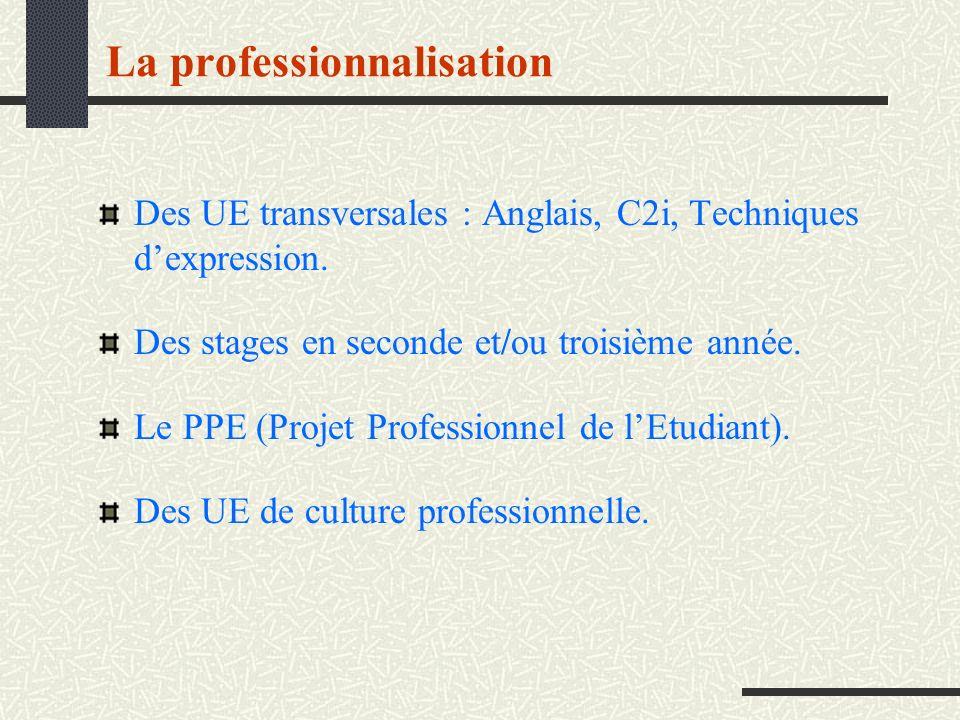 Des UE transversales : Anglais, C2i, Techniques dexpression. Des stages en seconde et/ou troisième année. Le PPE (Projet Professionnel de lEtudiant).