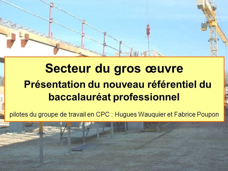 Secteur du gros œuvre Présentation du nouveau référentiel du baccalauréat professionnel pilotes du groupe de travail en CPC : Hugues Wauquier et Fabri
