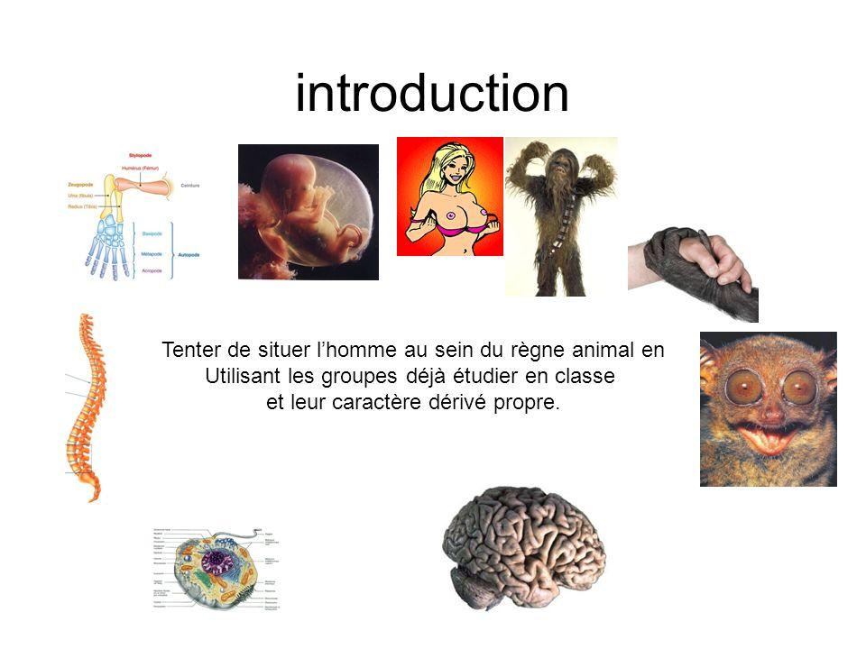 introduction Tenter de situer lhomme au sein du règne animal en Utilisant les groupes déjà étudier en classe et leur caractère dérivé propre.
