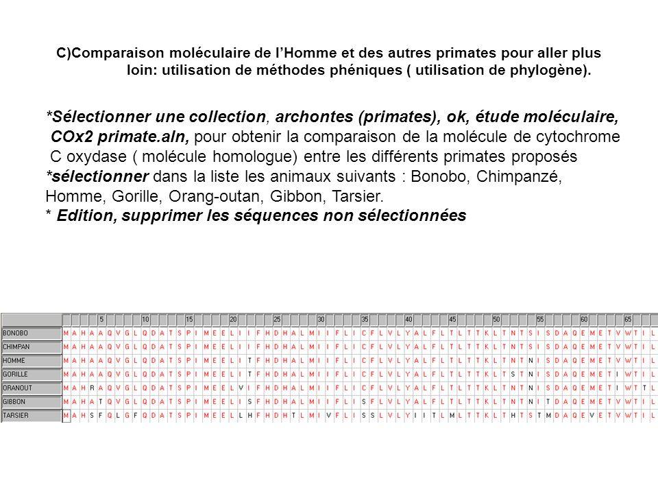 C)Comparaison moléculaire de lHomme et des autres primates pour aller plus loin: utilisation de méthodes phéniques ( utilisation de phylogène). *Sélec