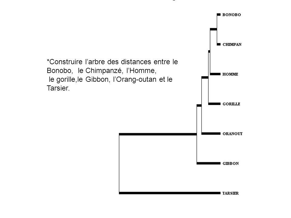 *Construire larbre des distances entre le Bonobo, le Chimpanzé, lHomme, le gorille,le Gibbon, lOrang-outan et le Tarsier.