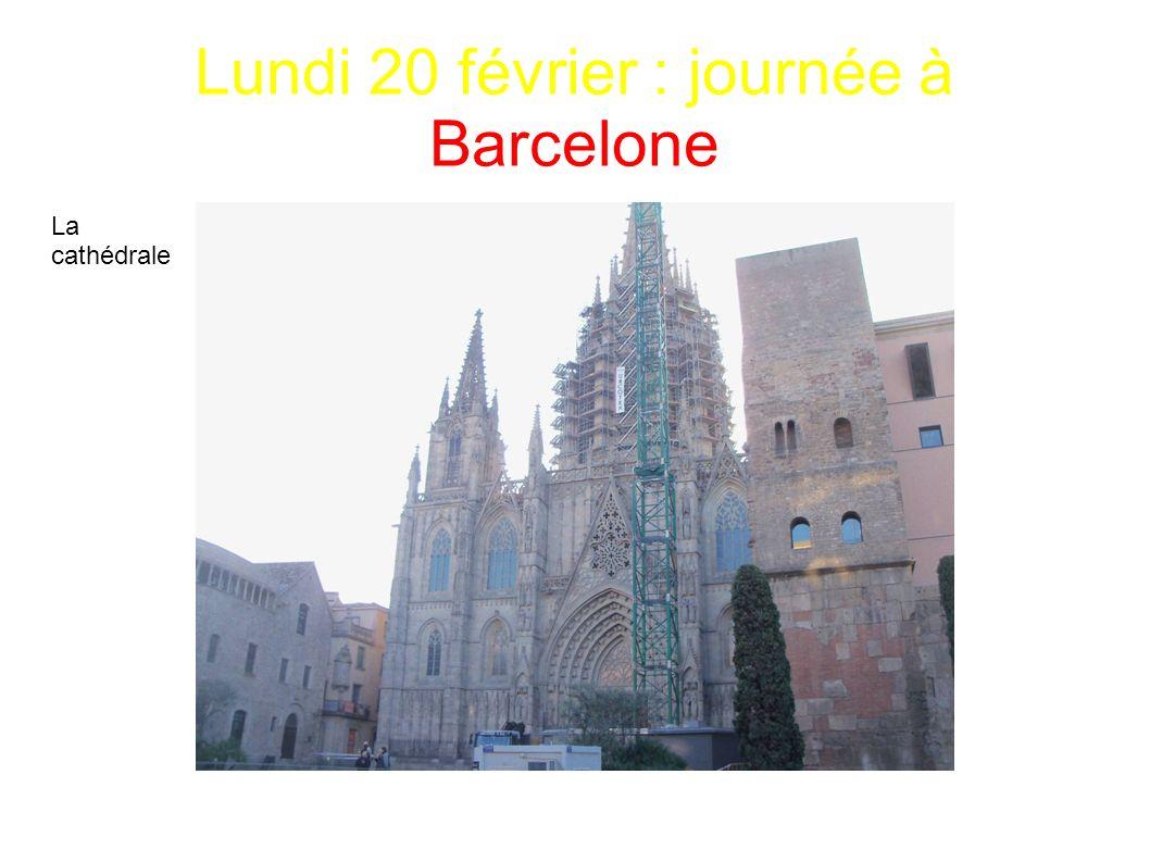 Lundi 20 février : journée à Barcelone La cathédrale