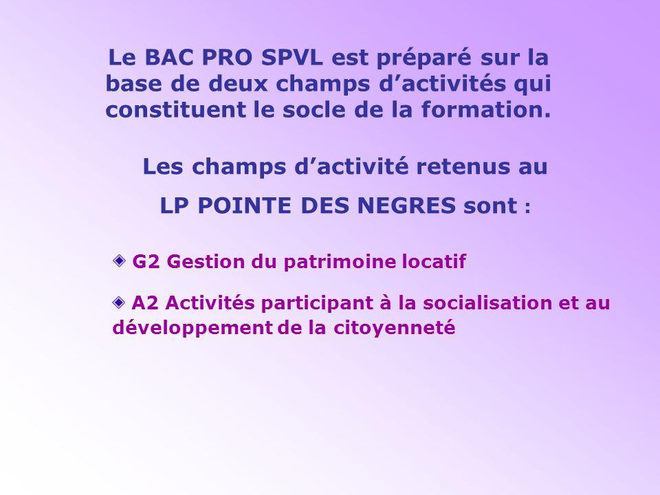 LES CHAMPS DACTIVITE G1 Gestion des espaces ouverts au public A1 Activités de soutien et daide à lintégration G2 Gestion du patrimoine locatif A2 Acti