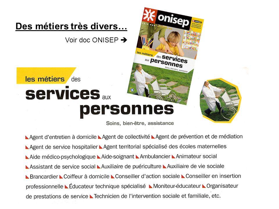 Des métiers très divers… Voir doc ONISEP