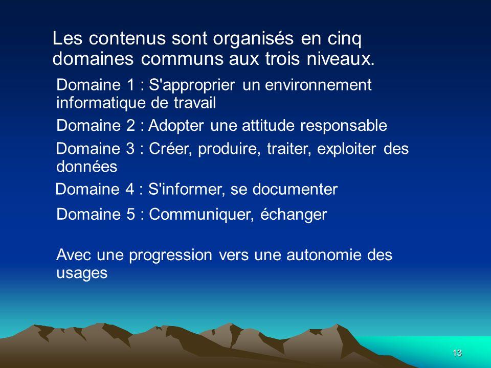 13 Les contenus sont organisés en cinq domaines communs aux trois niveaux. Domaine 1 : S'approprier un environnement informatique de travail Domaine 2