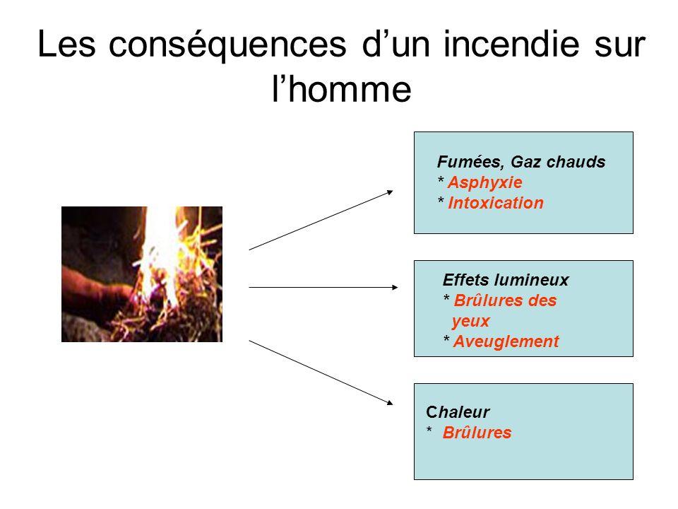Les différents modes de propagation dun incendie RAYONNEMENT La chaleur dégagée par un matériau qui brûle se transmet de proche en proche aux autres m