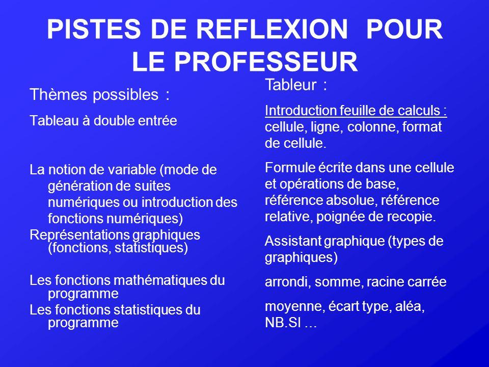 PISTES DE REFLEXION POUR LE PROFESSEUR Thèmes possibles : Tableau à double entrée La notion de variable (mode de génération de suites numériques ou in