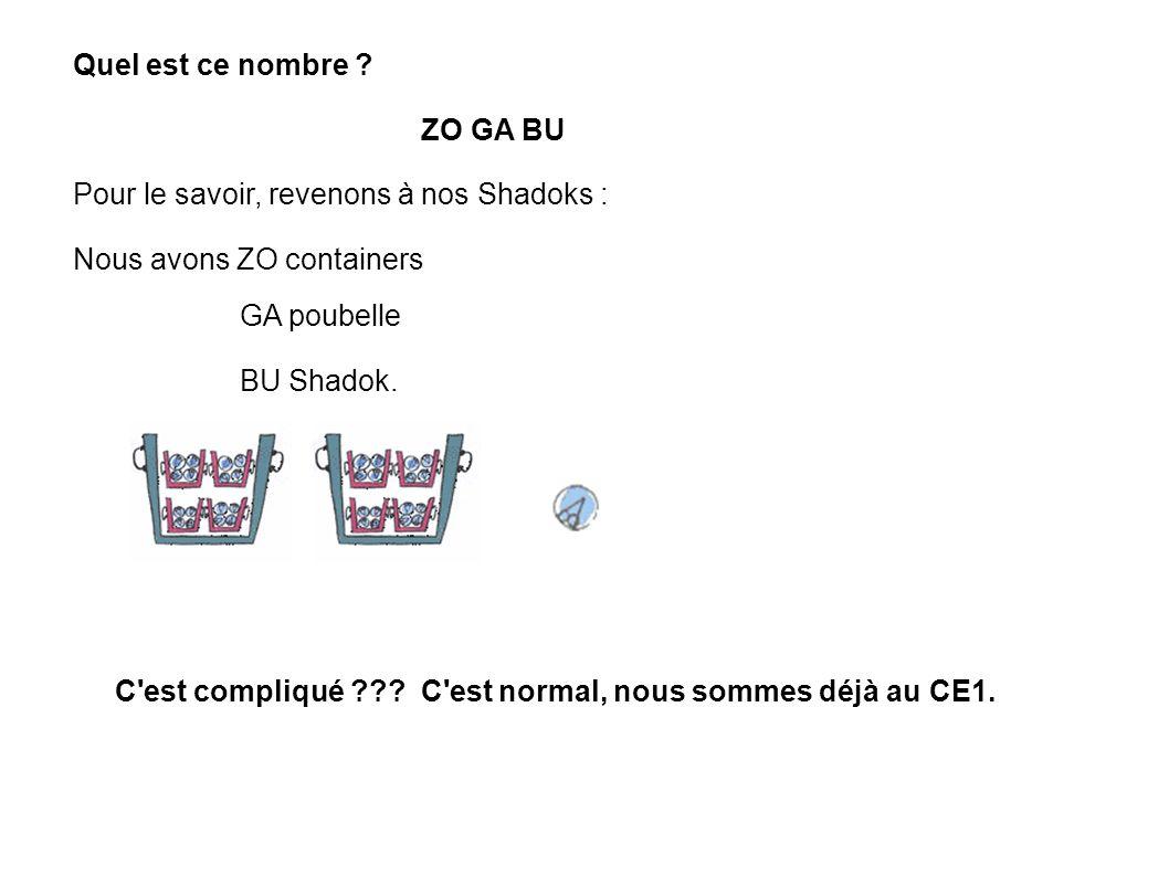 Quel est ce nombre ? ZO GA BU Pour le savoir, revenons à nos Shadoks : Nous avons ZO containers C'est compliqué ??? C'est normal, nous sommes déjà au