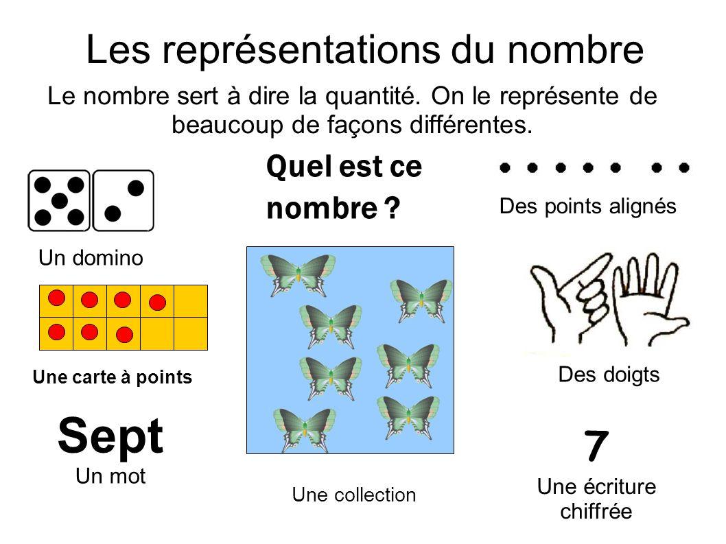 Les représentations du nombre Le nombre sert à dire la quantité. On le représente de beaucoup de façons différentes. Quel est ce nombre ? Une collecti