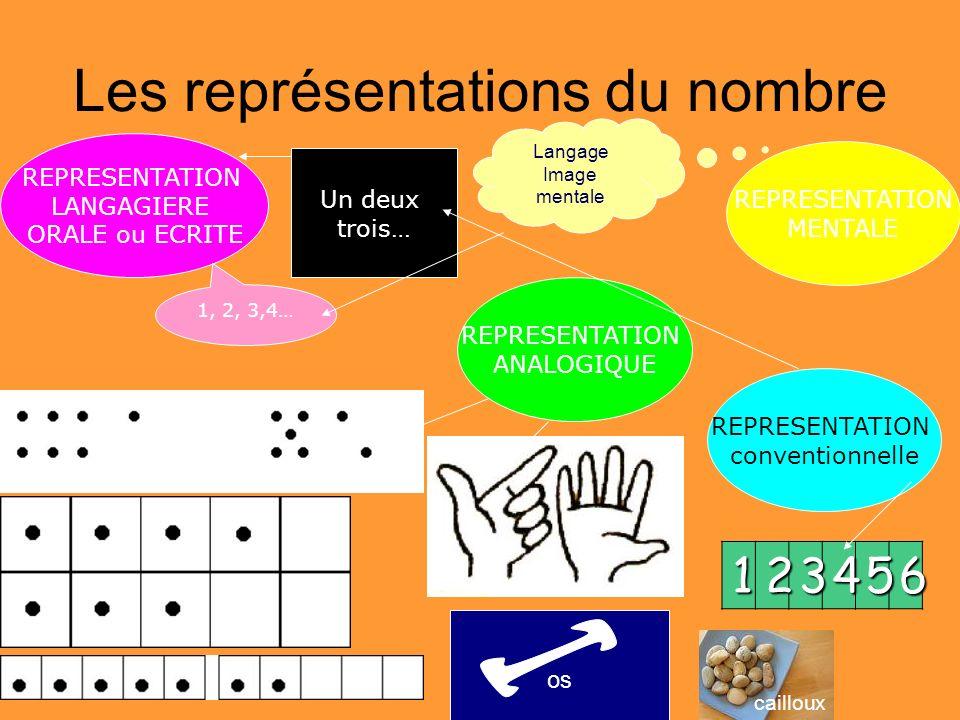 Les représentations du nombre REPRESENTATION ANALOGIQUE REPRESENTATION MENTALE REPRESENTATION LANGAGIERE ORALE ou ECRITE 1, 2, 3,4… Un deux trois… REP