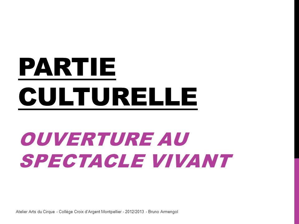 PARTIE CULTURELLE OUVERTURE AU SPECTACLE VIVANT Atelier Arts du Cirque - Collège Croix d'Argent Montpellier - 2012/2013 - Bruno Armengol