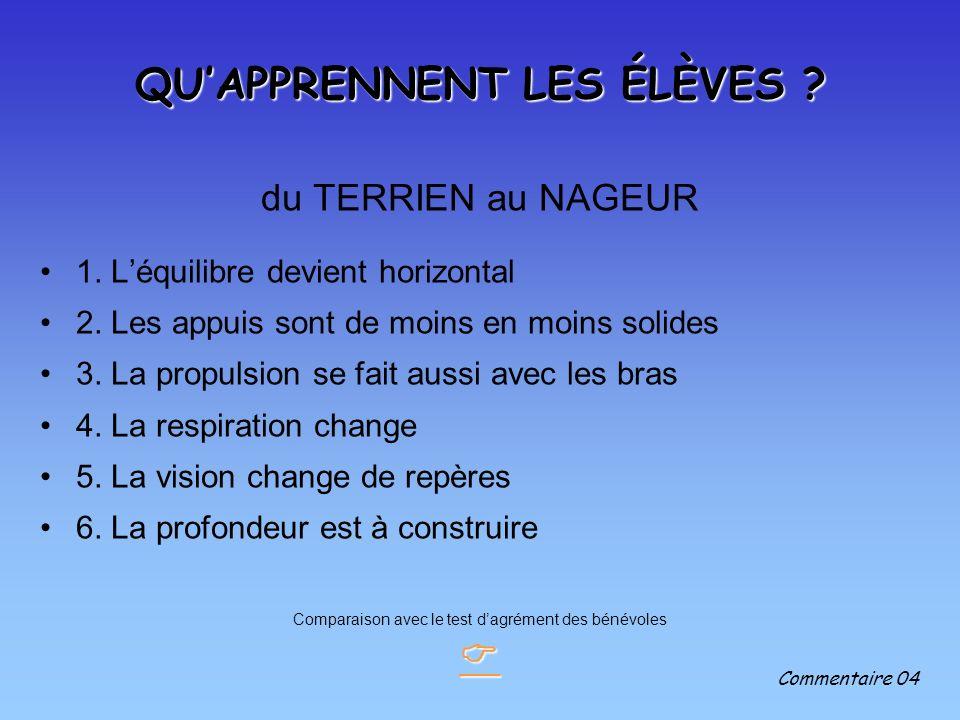 QUAPPRENNENT LES ÉLÈVES .du TERRIEN au NAGEUR 1. Léquilibre devient horizontal 2.