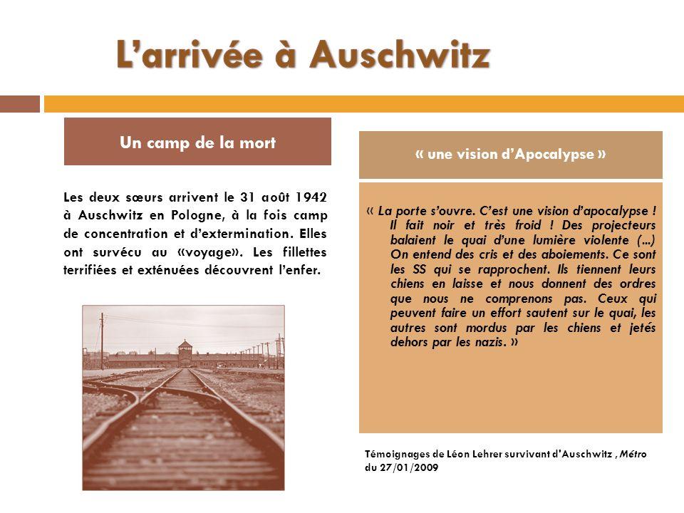 Les deux sœurs arrivent le 31 août 1942 à Auschwitz en Pologne, à la fois camp de concentration et dextermination. Elles ont survécu au «voyage». Les