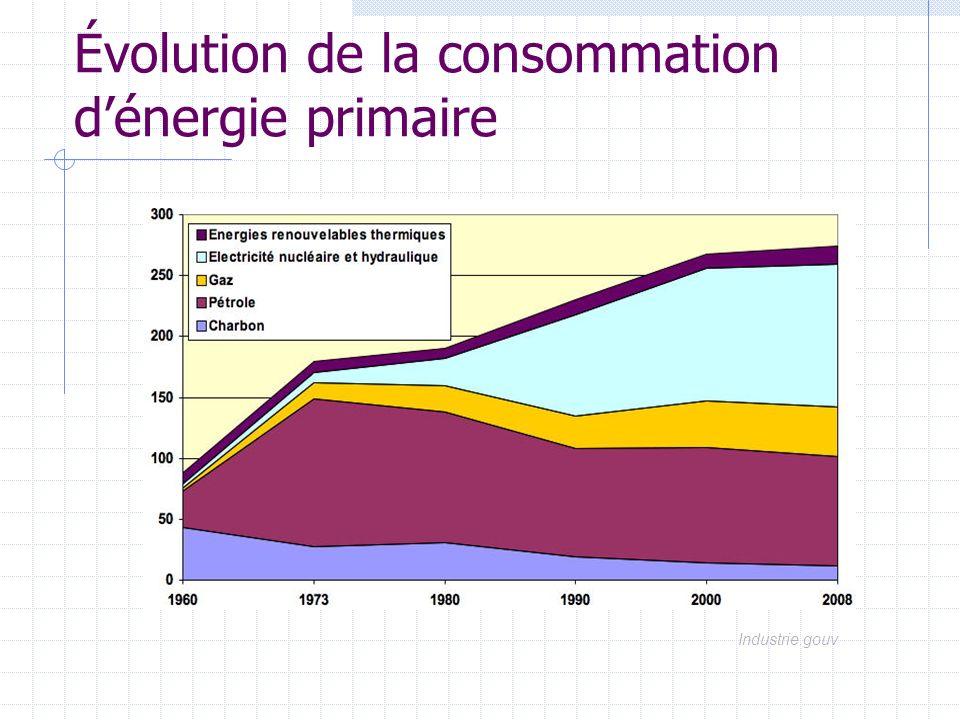 Énergies primaires consommées pour la production délectricité charbon6 pétrole1,5 gaz4,4 électricité nucléaire 115 énergies* renouvelables 5,6 Total132,5 Mtep * hydraulique, éolienne 86,7 % dénergie nucléaire primaire 9% dénergies fossiles 4% dénergies renouvelables Industrie.gouv - 2003 Soit 47% de lénergie primaire consommée