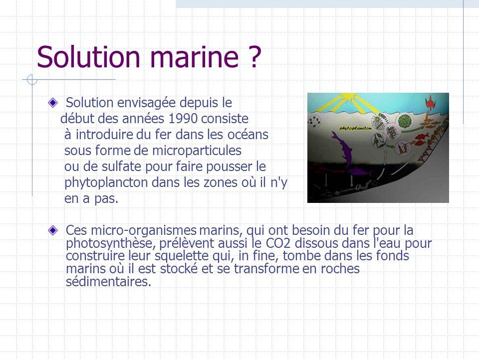 Solution marine ? Solution envisagée depuis le début des années 1990 consiste à introduire du fer dans les océans sous forme de microparticules ou de