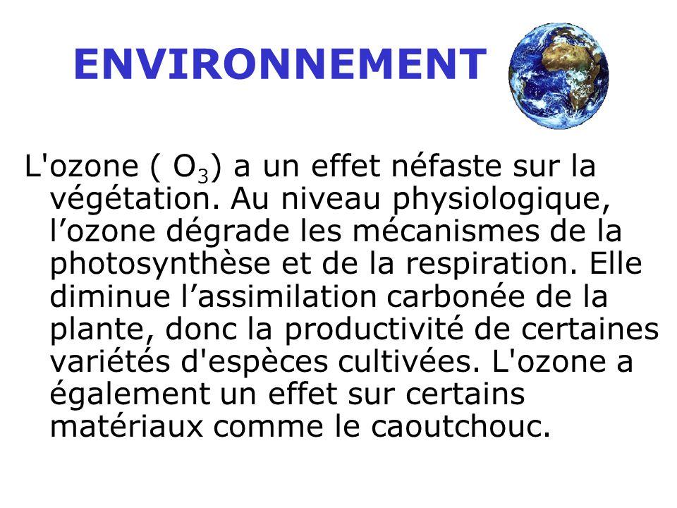 L'ozone est un gaz agressif capable de pénétrer profondément dans les poumons. Il provoque des irritations du nez et de la gorge, des altérations pulm