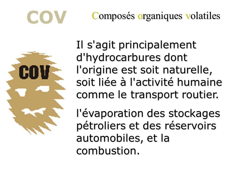 L'ozone ( O 3 ) a un effet néfaste sur la végétation. Au niveau physiologique, lozone dégrade les mécanismes de la photosynthèse et de la respiration.