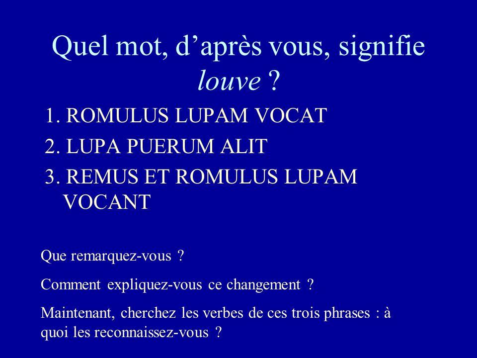 Quel mot, daprès vous, signifie louve ? 1. ROMULUS LUPAM VOCAT 2. LUPA PUERUM ALIT 3. REMUS ET ROMULUS LUPAM VOCANT Que remarquez-vous ? Comment expli