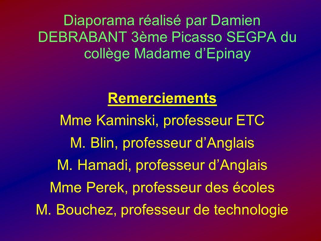 Diaporama réalisé par Damien DEBRABANT 3ème Picasso SEGPA du collège Madame dEpinay Remerciements Mme Kaminski, professeur ETC M. Blin, professeur dAn