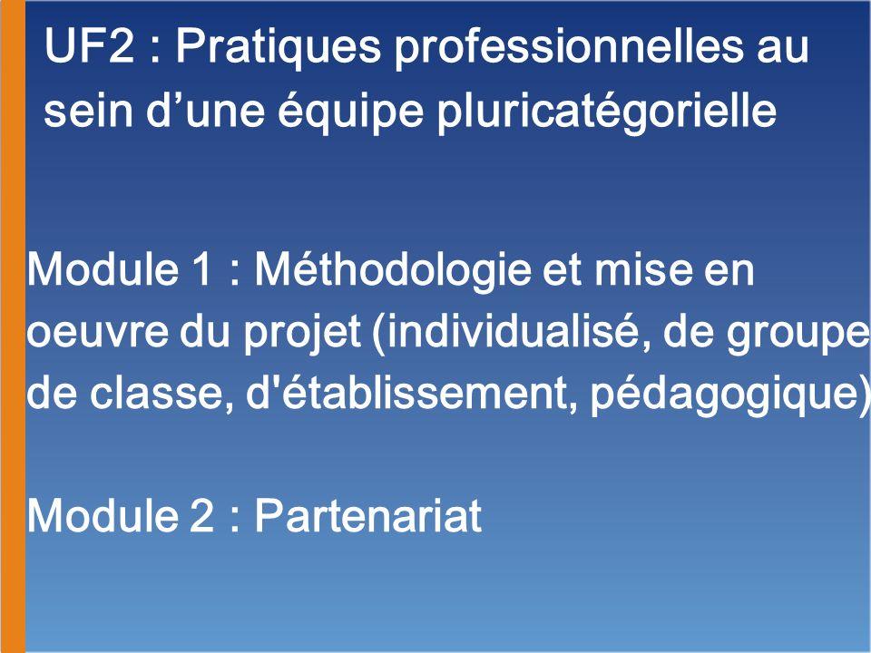 UF2 : Pratiques professionnelles au sein dune équipe pluricatégorielle Module 1 : Méthodologie et mise en oeuvre du projet (individualisé, de groupe,