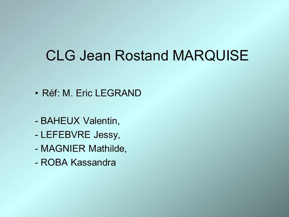 CLG Jean Rostand MARQUISE Réf: M. Eric LEGRAND - BAHEUX Valentin, - LEFEBVRE Jessy, - MAGNIER Mathilde, - ROBA Kassandra