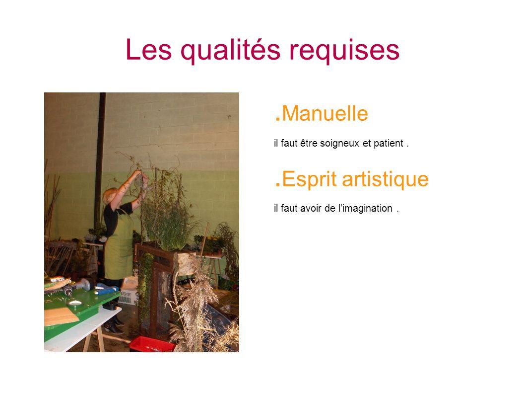 Les qualités requises. Manuelle il faut être soigneux et patient.. Esprit artistique il faut avoir de l'imagination.