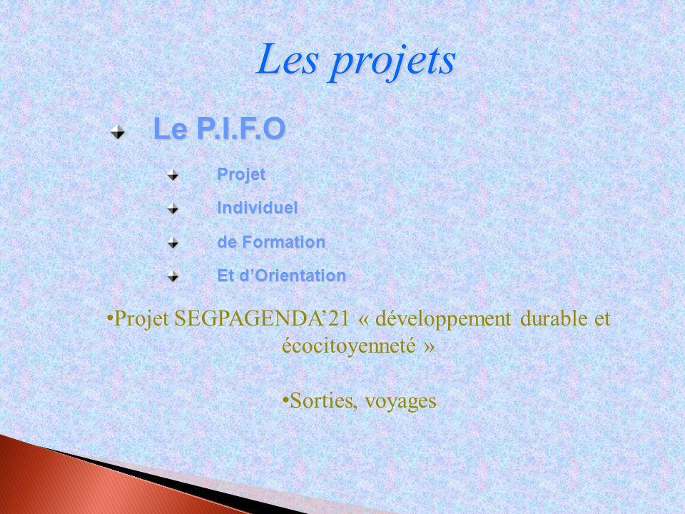 Les projets Le P.I.F.O ProjetIndividuel de Formation Et dOrientation Projet SEGPAGENDA21 « développement durable et écocitoyenneté » Sorties, voyages