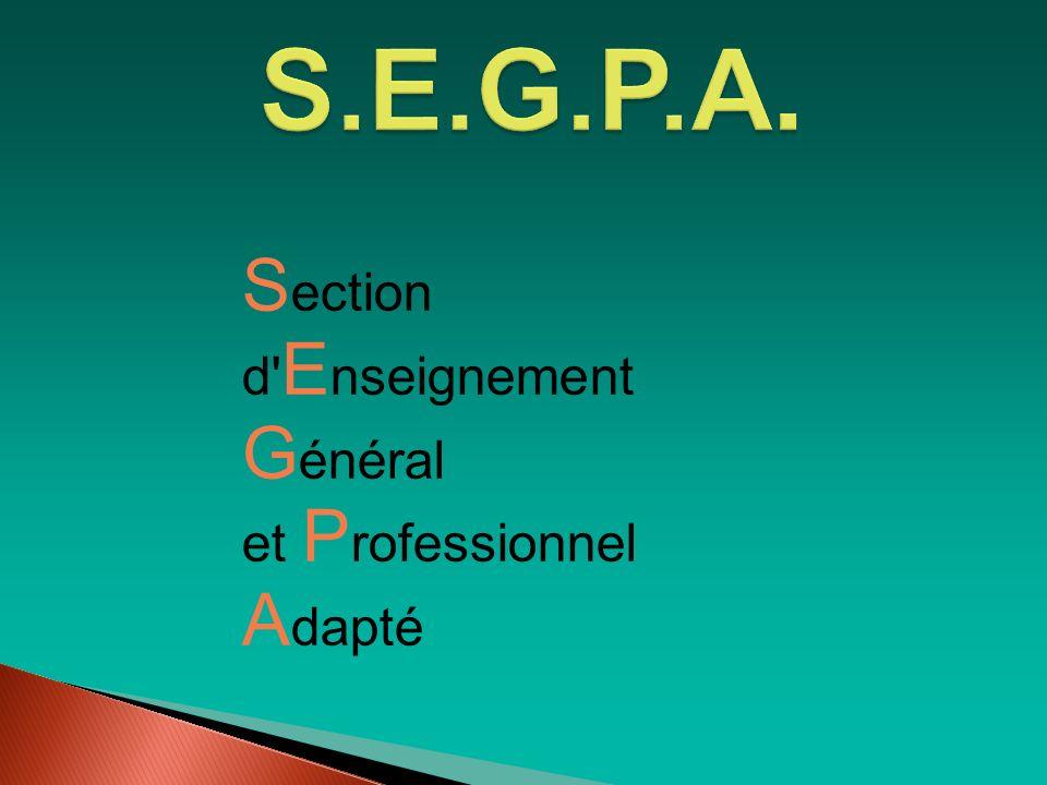 Le projet professionnel Quelque soit le métier envisagé il faut : Penser à son orientationet… Penser à son orientationet… Choisir une formationpour… Choisir une formationpour… Obtenir une qualification CAP (niveau5) Obtenir une qualification CAP (niveau5)