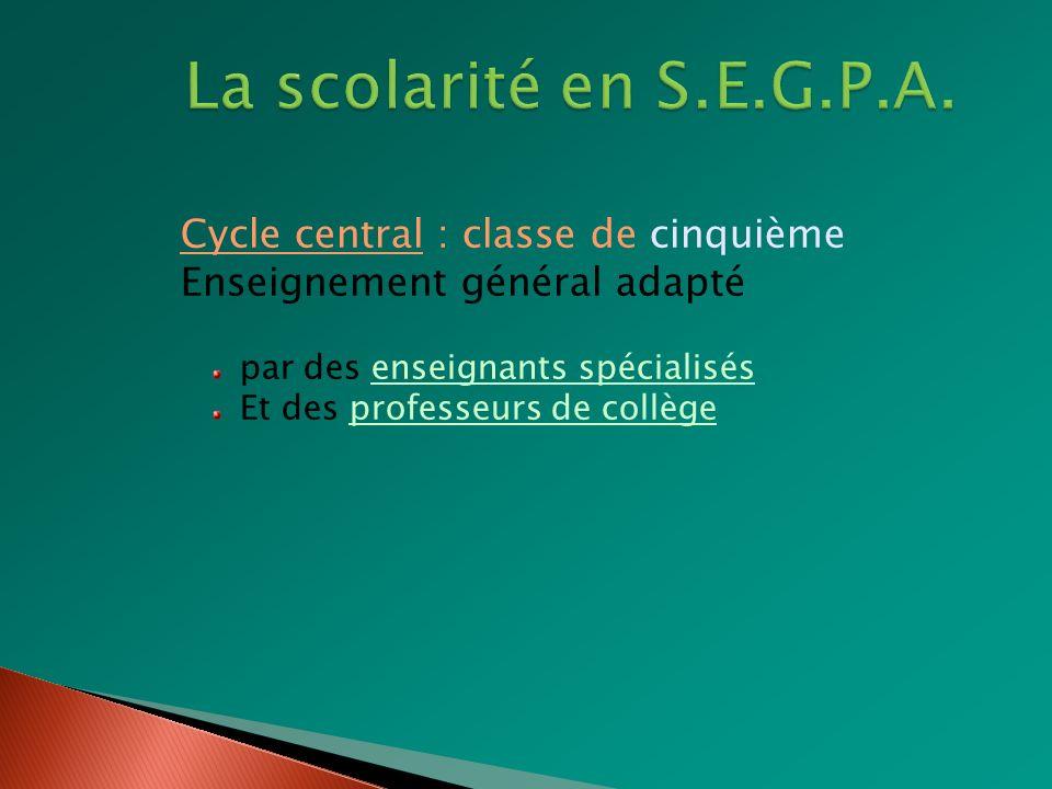 Cycle central : classe de quatrième Enseignement général adapté Par des enseignants spécialisés Par des professeurs de collège Enseignement technologique Par des professeurs de lycée professionnel