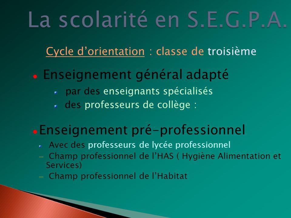 Cycle dorientation : classe de troisième Enseignement général adapté par des enseignants spécialisés des professeurs de collège : Enseignement pré-pro