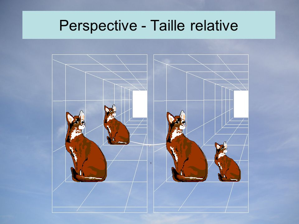 Perspective - Taille relative