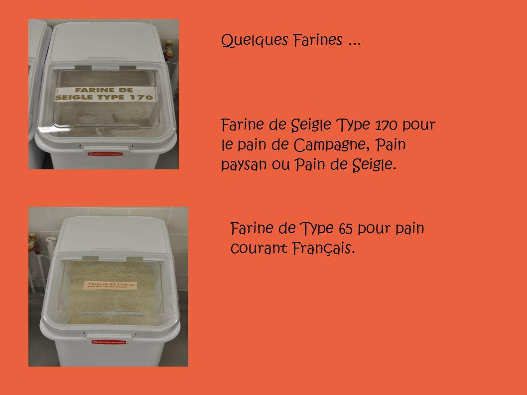 Farine de Type 65 pour pain courant Français. Farine de Seigle Type 170 pour le pain de Campagne, Pain paysan ou Pain de Seigle. Quelques Farines...