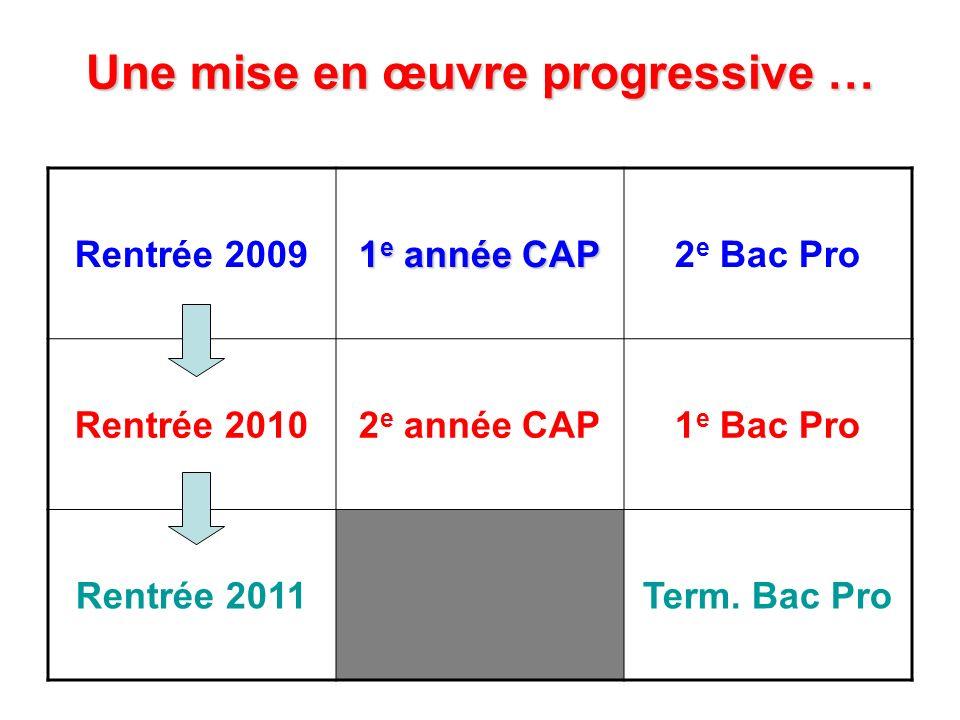 Une mise en œuvre progressive … Rentrée 2009 1 e année CAP 2 e Bac Pro Rentrée 20102 e année CAP1 e Bac Pro Rentrée 2011Term. Bac Pro