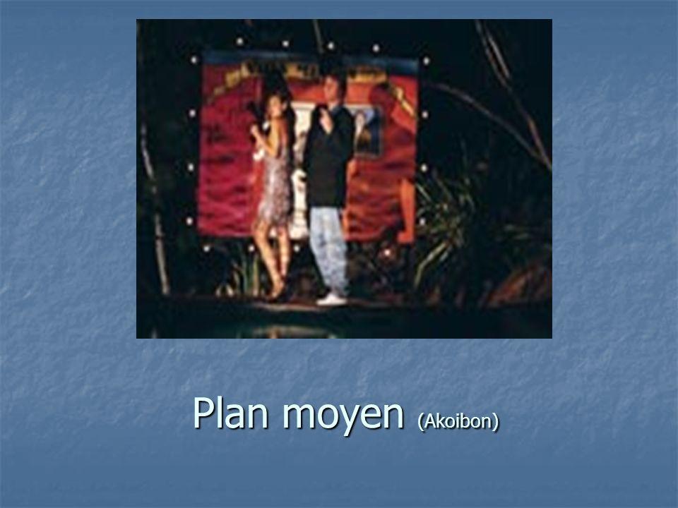 Plan moyen (Akoibon)