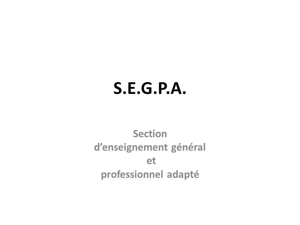 S.E.G.P.A. Section denseignement général et professionnel adapté