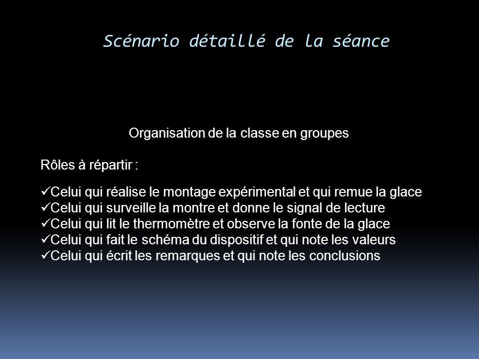 Scénario détaillé de la séance Organisation de la classe en groupes Rôles à répartir : Celui qui réalise le montage expérimental et qui remue la glace