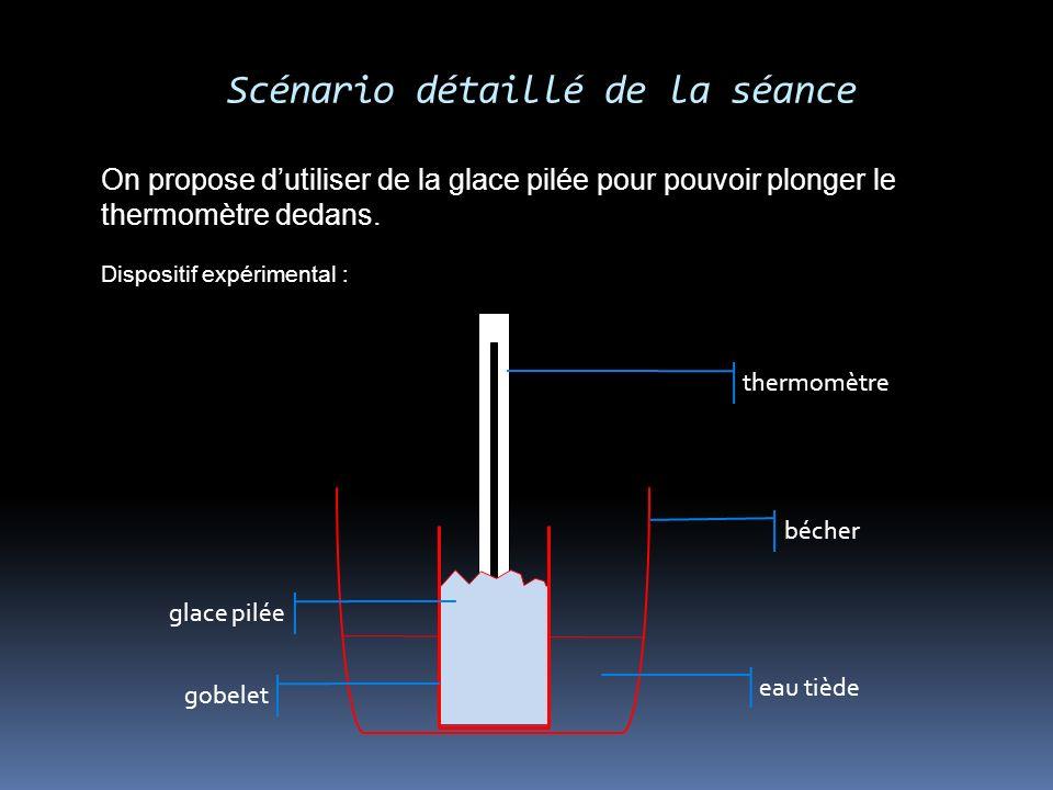 Scénario détaillé de la séance On propose dutiliser de la glace pilée pour pouvoir plonger le thermomètre dedans. Dispositif expérimental : thermomètr
