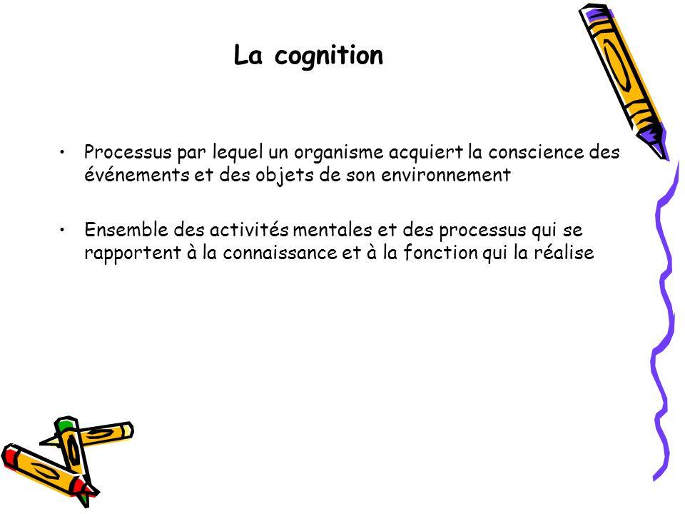 La cognition Processus par lequel un organisme acquiert la conscience des événements et des objets de son environnement Ensemble des activités mentale