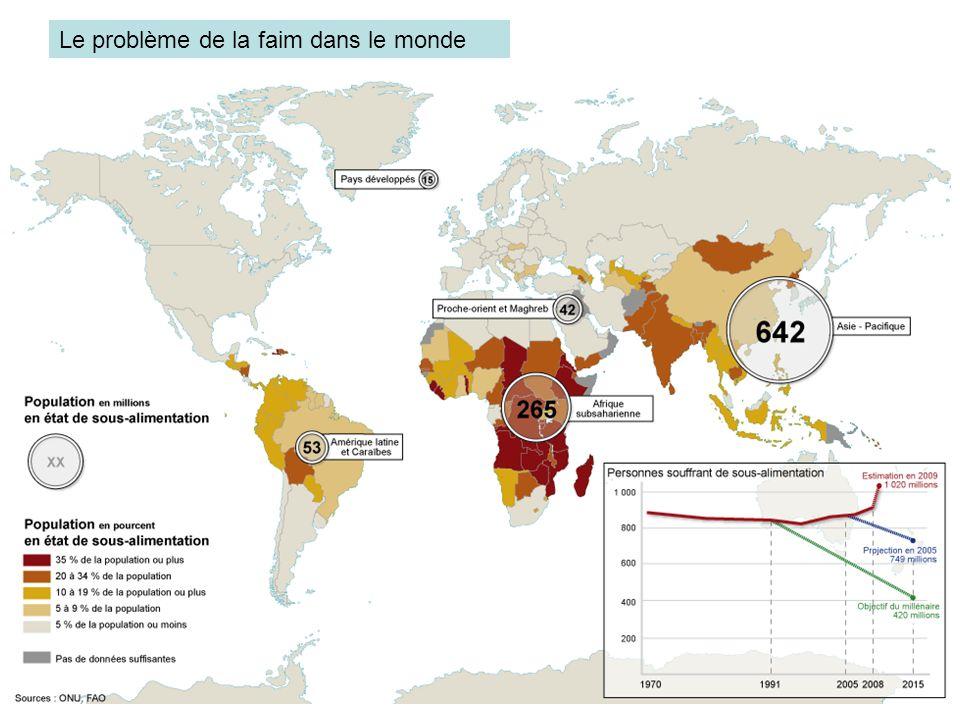 Le problème de la faim dans le monde