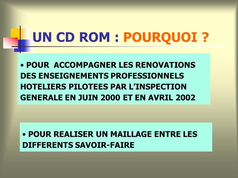 UN CD ROM : POURQUOI .