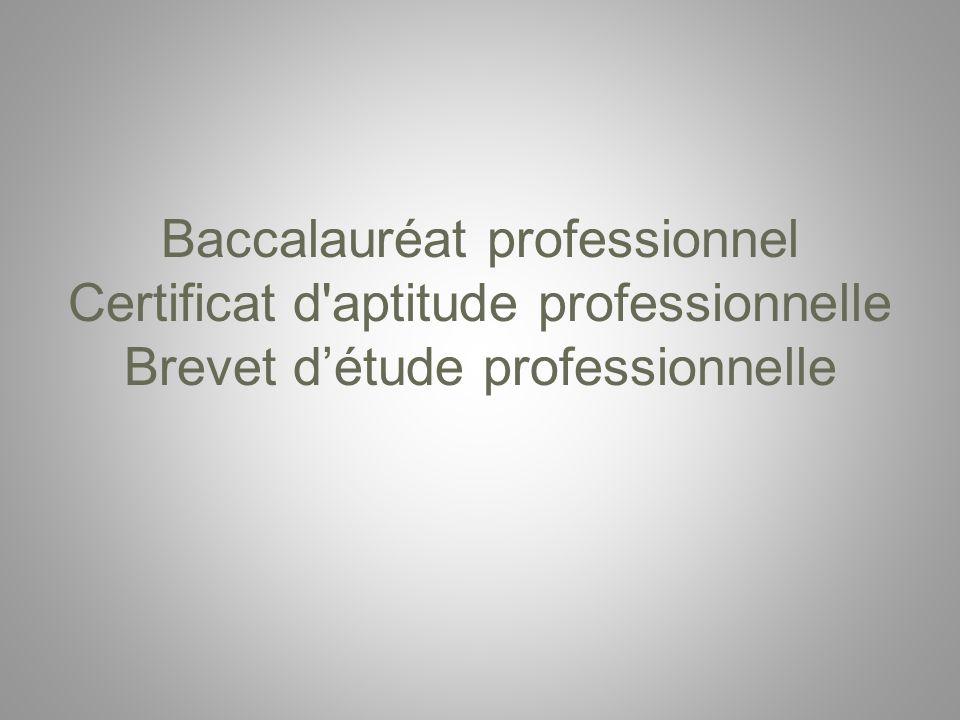 Baccalauréat professionnel Certificat d'aptitude professionnelle Brevet détude professionnelle