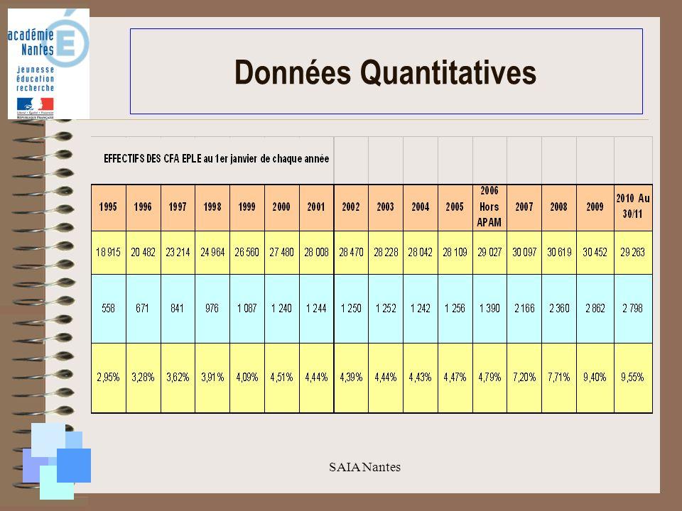 SAIA Nantes Données Quantitatives