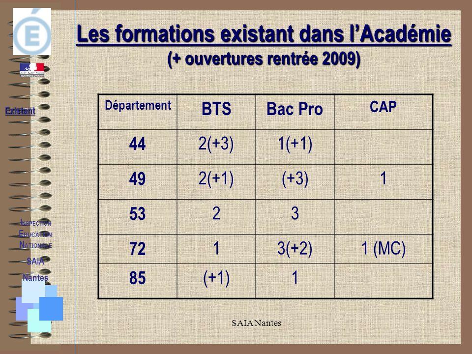 SAIA Nantes La Mixité Voletpédagogique Volet pédagogique Mixité I NSPECTION E DUCATION N ATIONALE SAIA Nantes