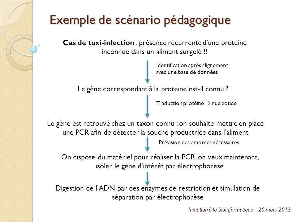 Initiation à la bioinformatique – 20 mars 2013 Exemple de scénario pédagogique Cas de toxi-infection : présence récurrente dune protéine inconnue dans