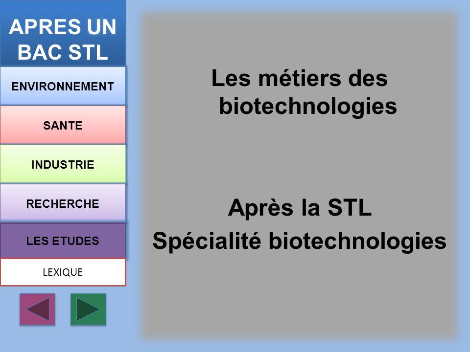 Les métiers des biotechnologies Après la STL Spécialité biotechnologies ENVIRONNEMENT SANTE INDUSTRIE RECHERCHE LES ETUDES LEXIQUE