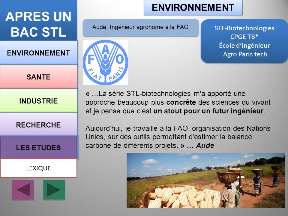 STL-Biotechnologies CPGE TB* École dingénieur Agro Paris tech STL-Biotechnologies CPGE TB* École dingénieur Agro Paris tech ENVIRONNEMENT SANTE INDUST
