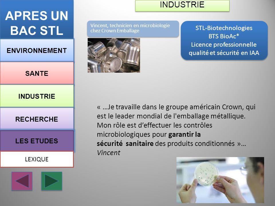 STL-Biotechnologies BTS BioAc* Licence professionnelle qualité et sécurité en IAA STL-Biotechnologies BTS BioAc* Licence professionnelle qualité et sé